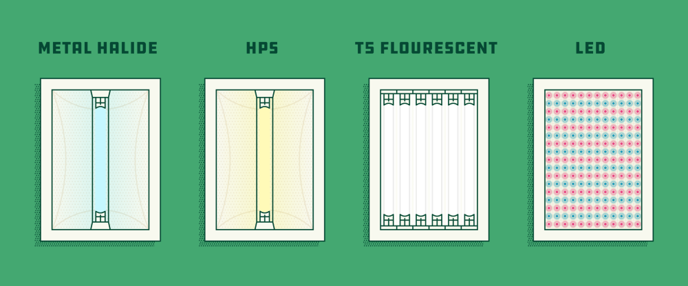 medium resolution of illustration of the main types of grow lights for indoor growing source