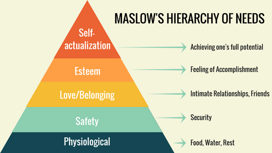 Image result for hierarchy of needs