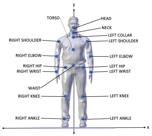 small resolution of each joint is essentially a point in 3d space represented by 3 coordinates x y and z thos joints are mapped onto a virtual body