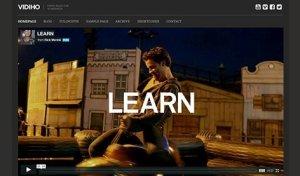 CSS Igniter Vidiho WordPress Theme