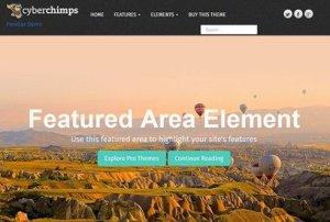 CyberChimps Parallax Pro WordPress Theme