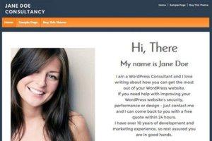 CyberChimps Responsive Pro WordPress Theme