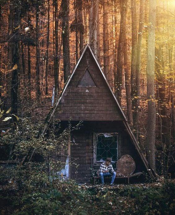 La Cabane Au Fond Des Bois : cabane, Comment, Construire, Cabane, Idées, Cabanes