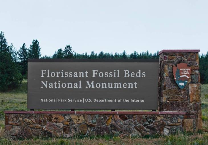 18. Fossil Hunt at the Florissant Fossil Beds National Monument