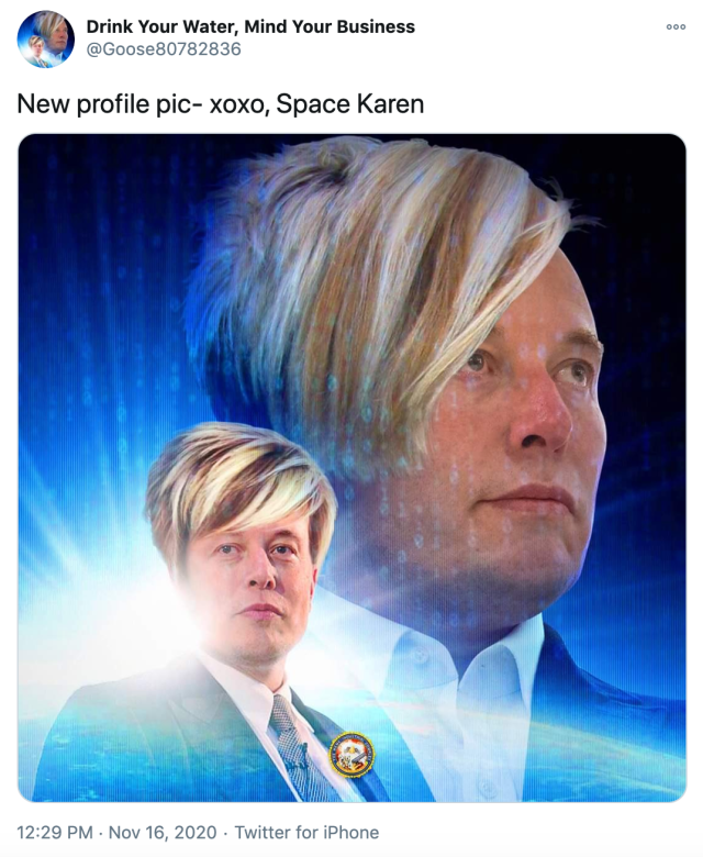 """""""New profile pic- xoxo, Space Karen"""" image of Elon Musk against a starburst with the Karen haircut, looking off to the side. A smaller version of the same image facing the other way in front."""
