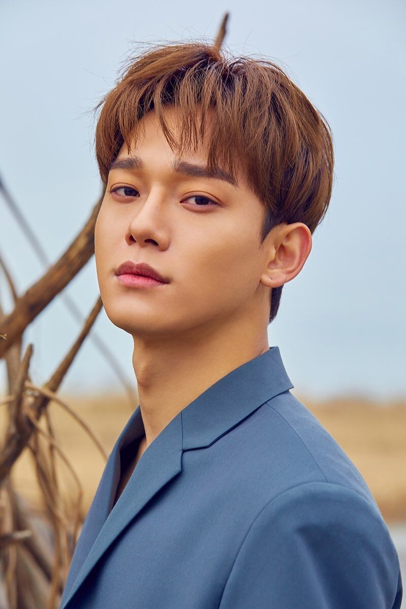 Chen Exo Profile And Facts Chen S Ideal Type Updated