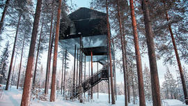 Everything Is Awful So Let's All Escape To This Treehouse For Grown-Ups