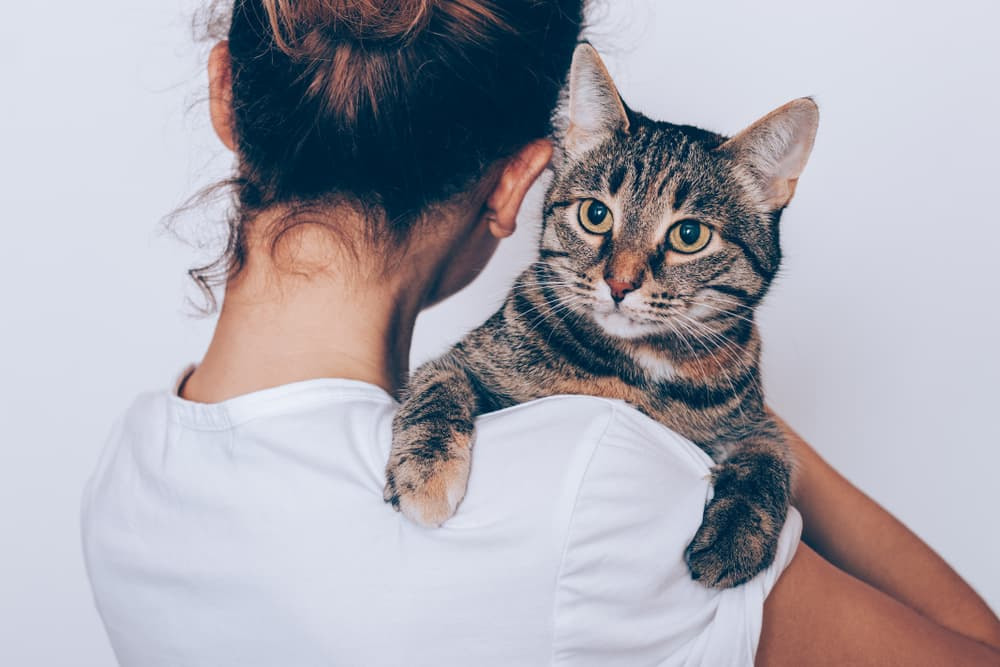 Woman hugging stressed cat