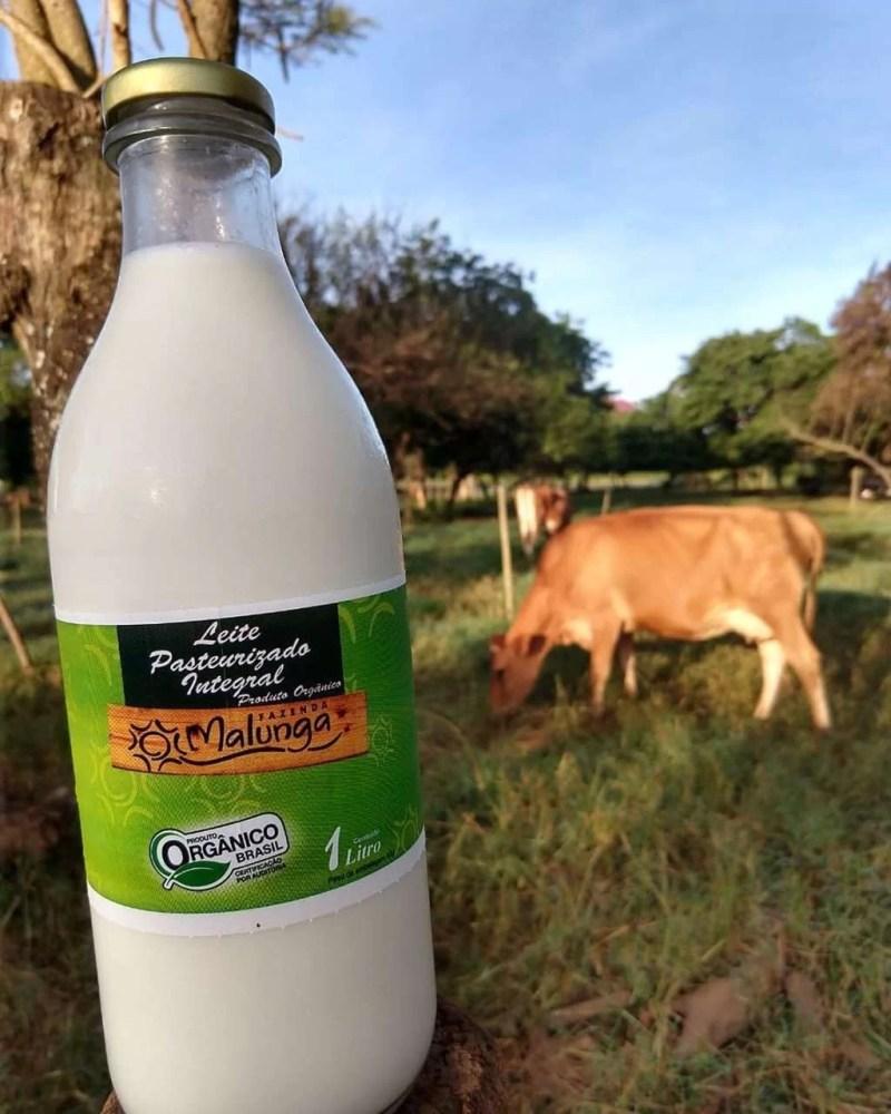 Embalagem de leite integral