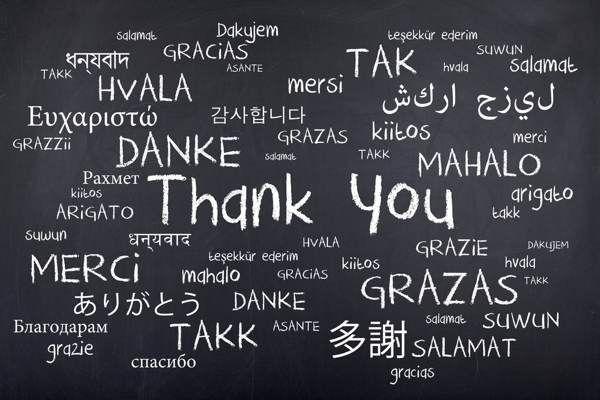 Frases Trabajo De Agradecimiento