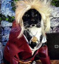 David Bowie's Jareth Costume Who Wore It Better: The Cat ...