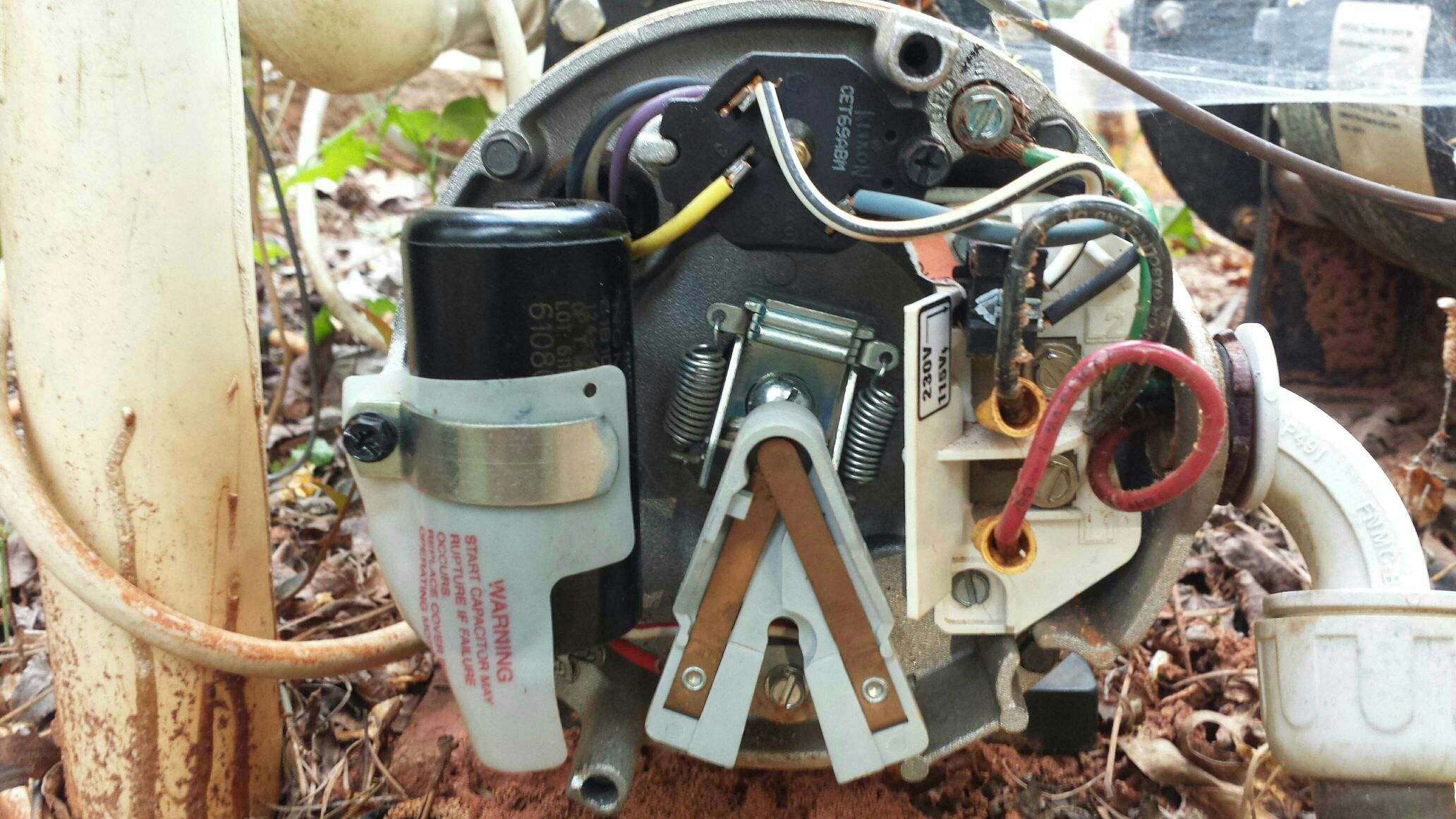 sta rite pool pump wiring diagram draw brief humming from motor