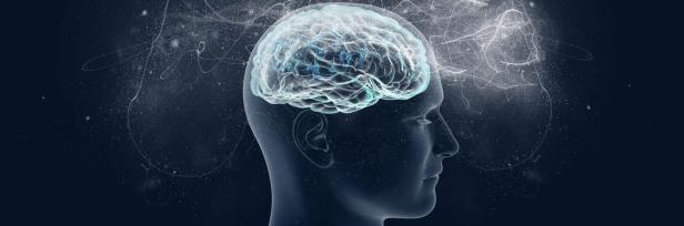 La Psicología del Diseño y la Neurociencia de una Increíble UX