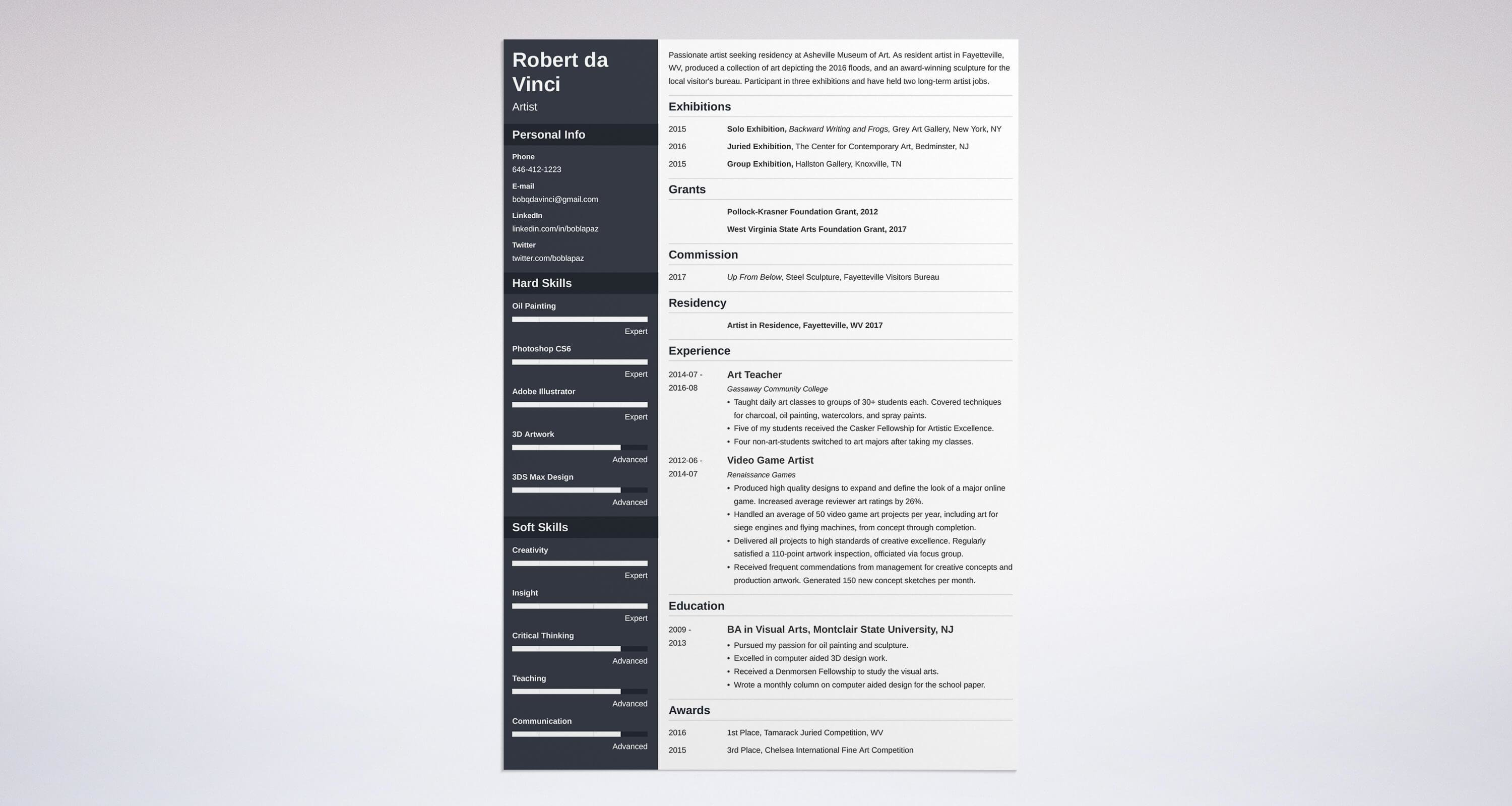 medical resume format%0A Artist Resume Sample And Complete Guide    Examples