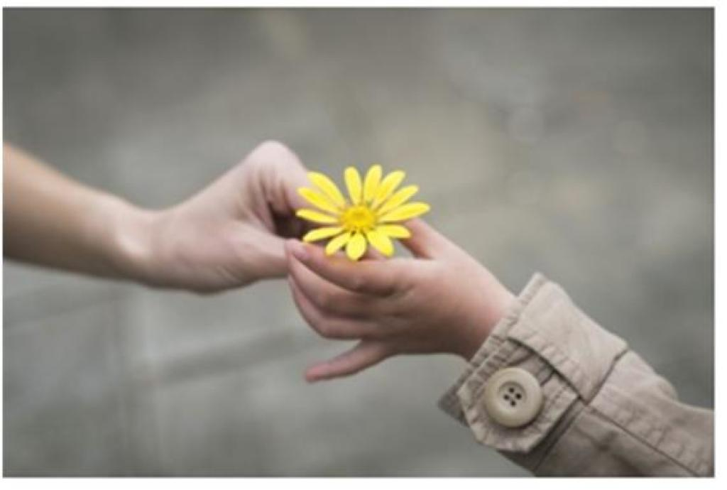Initiatives Fleurs Gifts Of Compassion: A Healing Ministry | Church Of Saint