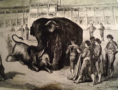 Eléphant - Gustave Dore