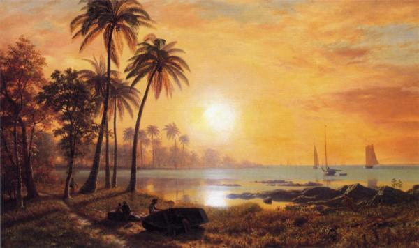 tropical landscape with fishing