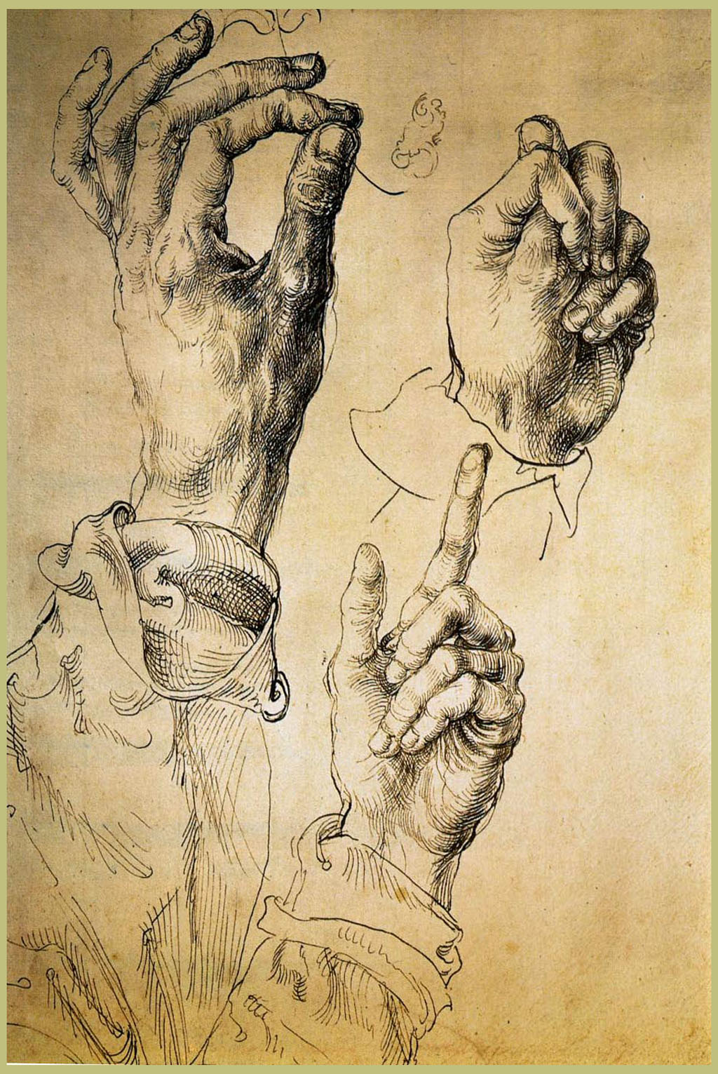 Praying Hands (Dürer) - Wikipedia