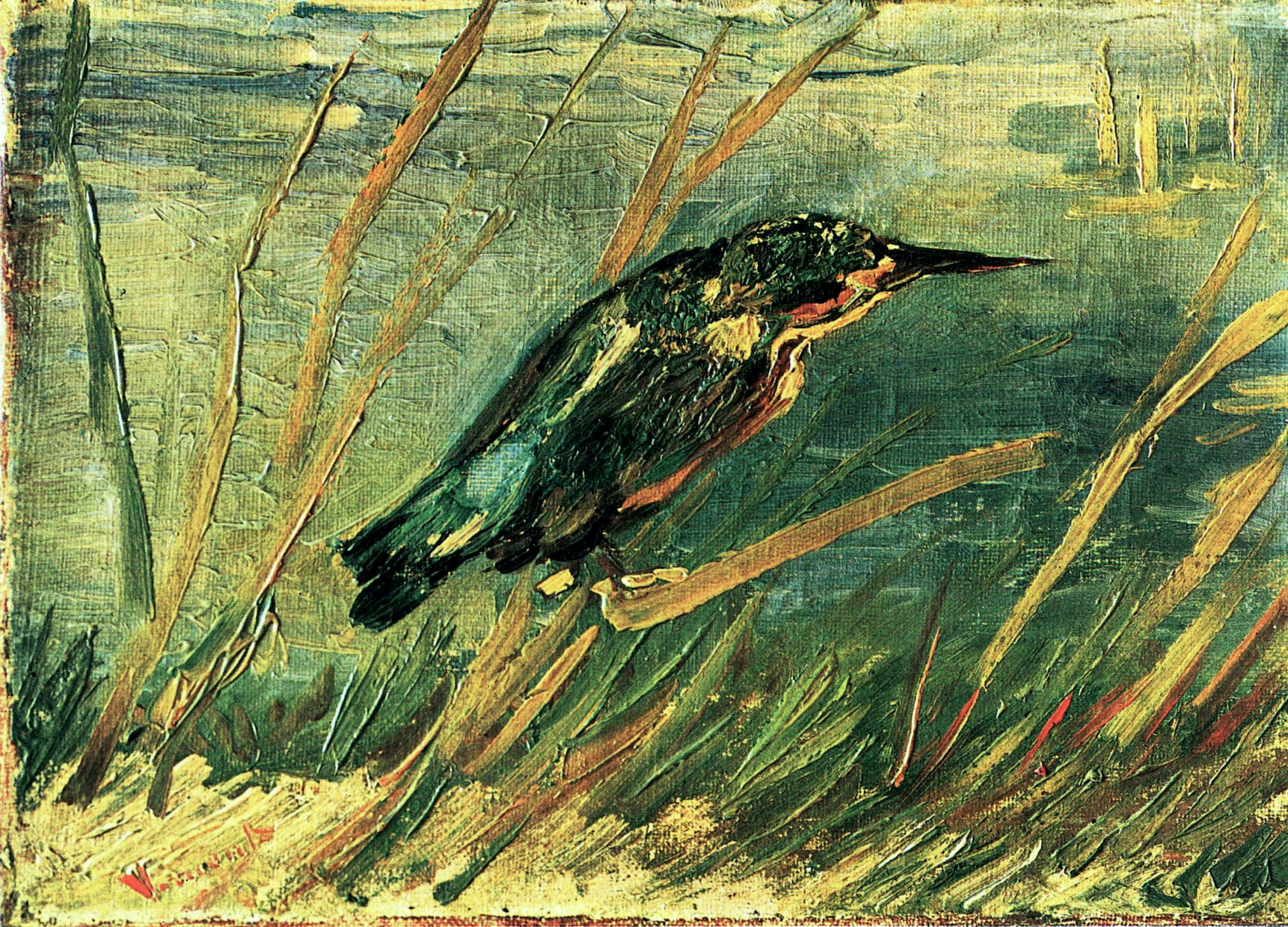 Van Gogh, Kingfisher