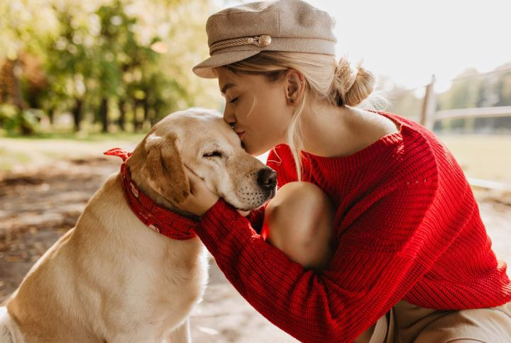 Dog Tips – Finding the Right Behaviors is Key to Relieving Your Dog of Stress