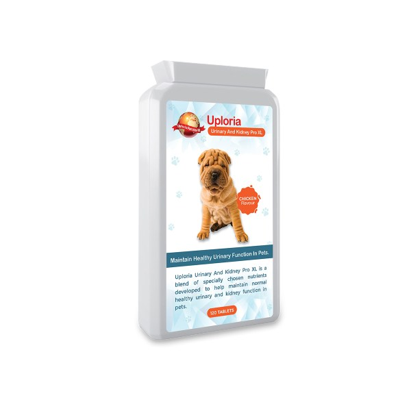 UTI tablets for Urinary and Kidney Support for Pets