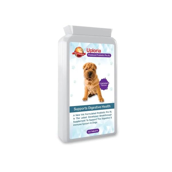 Probiotic Tablets for Dog