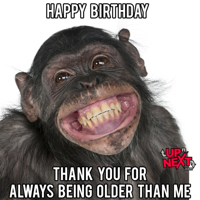 happy birthday monkey meme