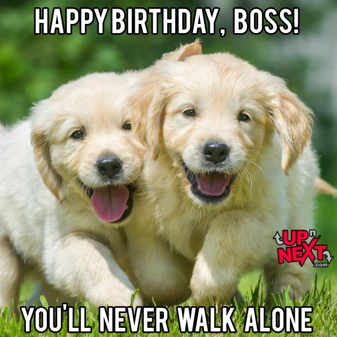 happy birthday boss meme