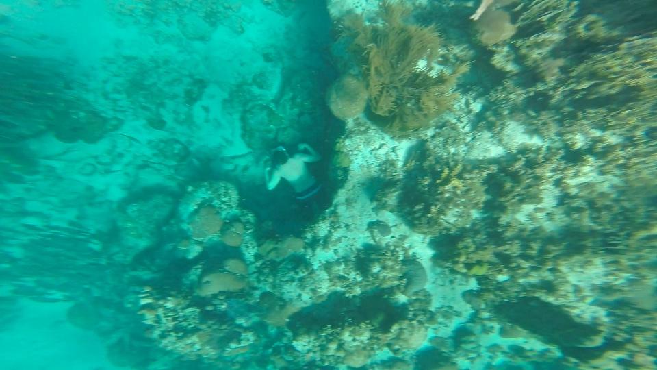 Diver at Hol Chan Marine Reserve