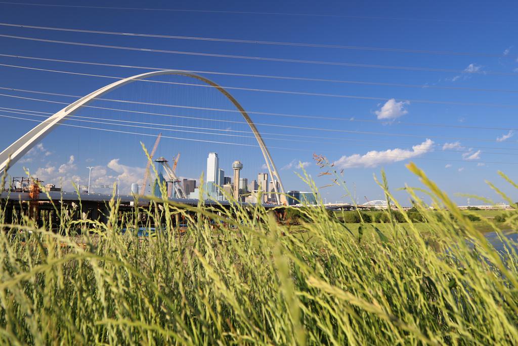 Dallas Skyline_-3