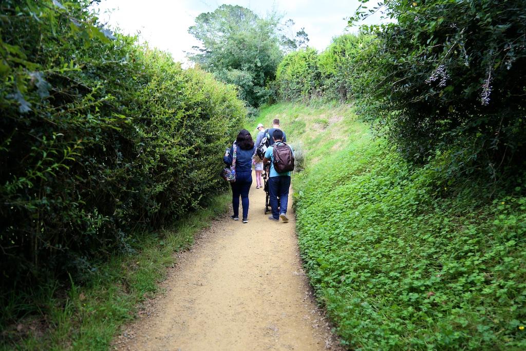 Group walking at Hobbiton Movie Set Tour