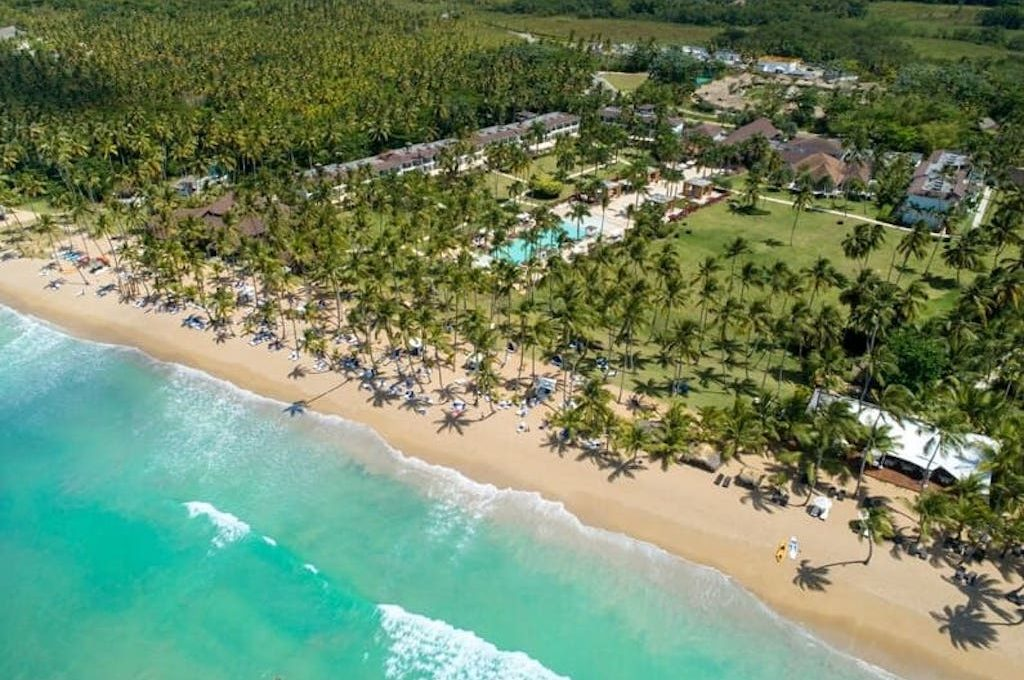 Voluminous palms on beach front at Viva Wyndham V Samana - All-Inclusive Resort, Adults Only.