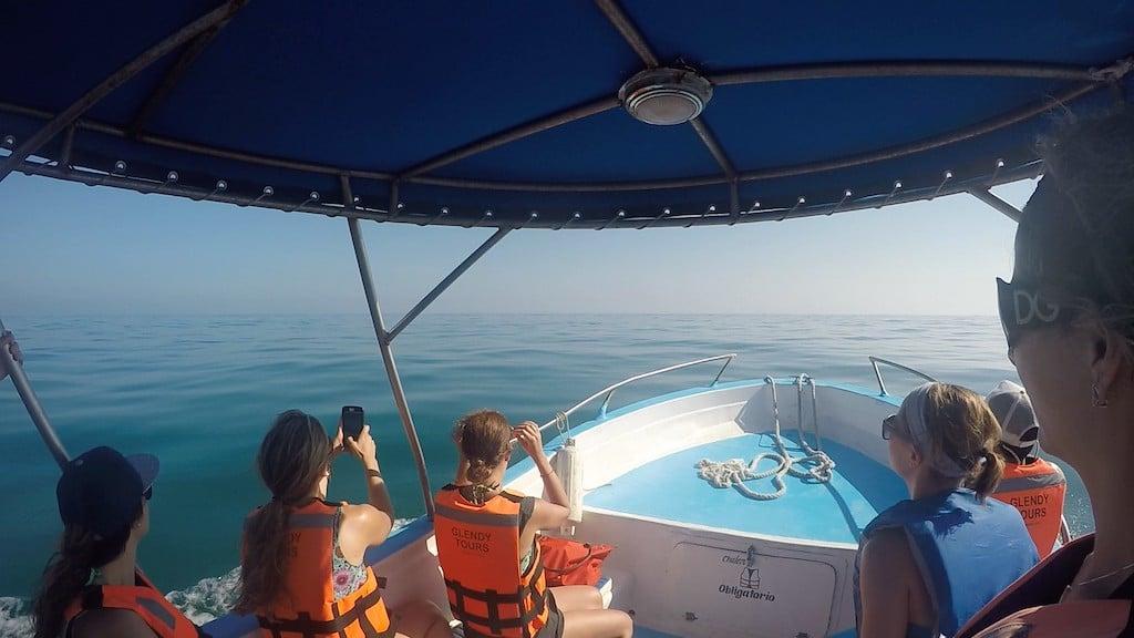 Group looking at ocean