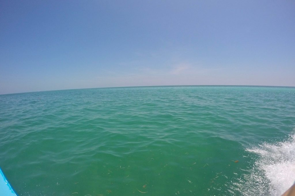Ocean view from boat