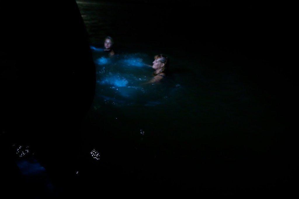 People swimming Luminous Lagoon in Jamaica
