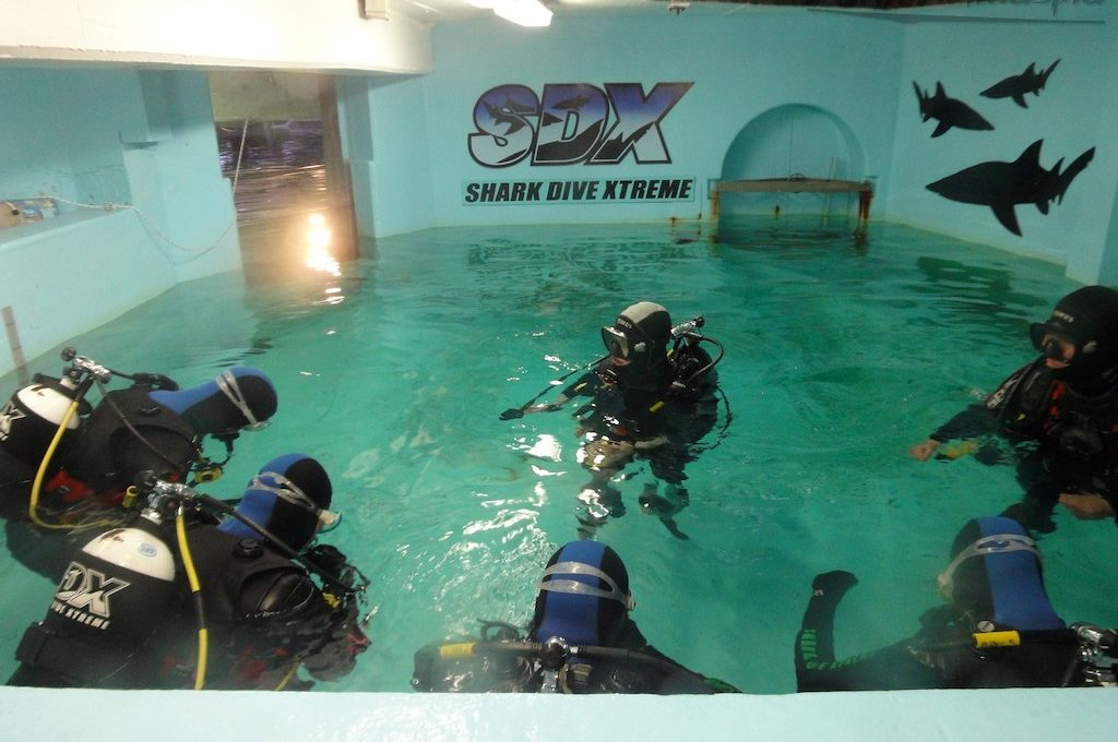 Scuba divers in water tank at Manly Sea Life Sanctuary