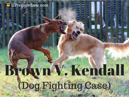 Brown V. Kendall,inevitable accidents,law of torts,General defences in torts law