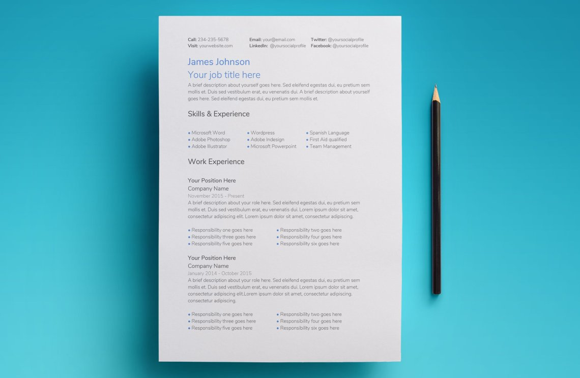 google docs resume template - professional 2017 design