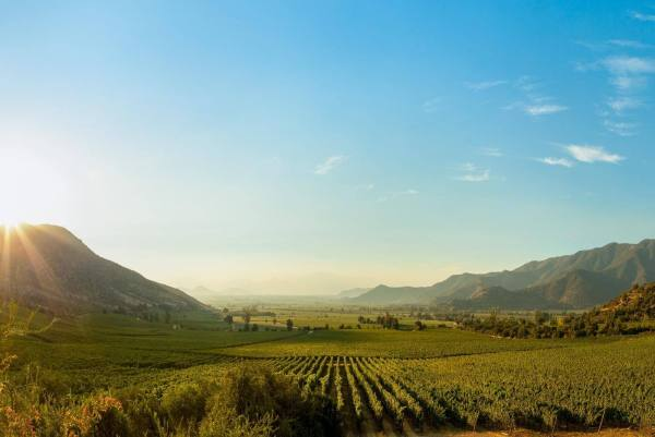 food and wine trips in south america