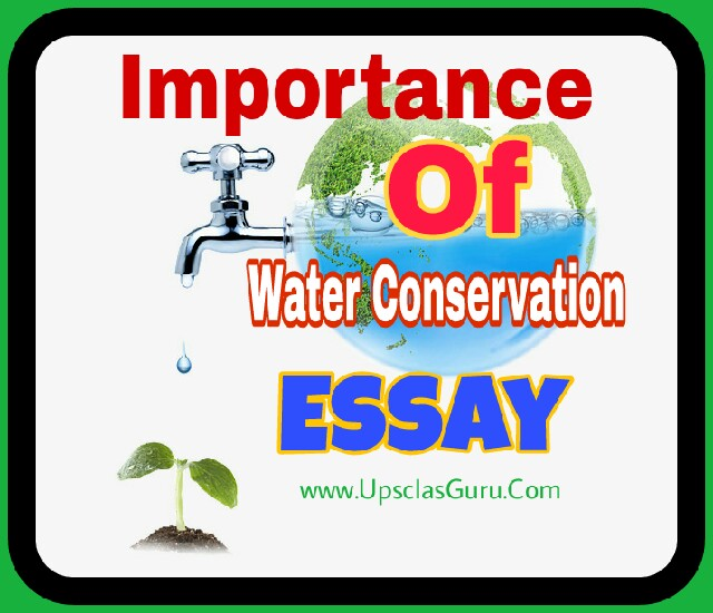 Sample Essays High School Students  How To Write A High School Essay also Health Needs Assessment Essay Importance Of Water Conservation Essay  Upsc Ias Guru Thesis Example Essay