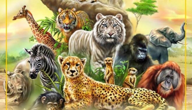 वन्य जीव संरक्षण के क्षेत्र में करियर
