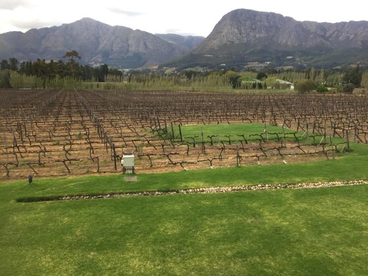 Holden Manz estate in Franschhoek, south africa wine tram