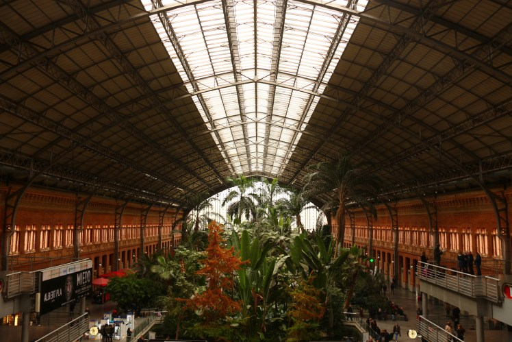 madrid in one day, puerta de atocha tropical garden