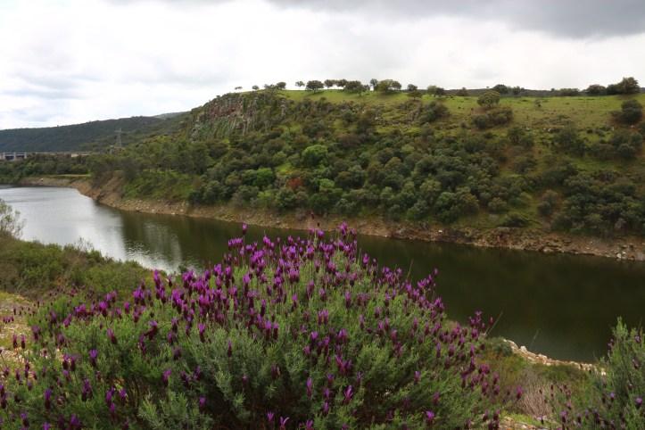spring in Extremadura, Montfrague landscape