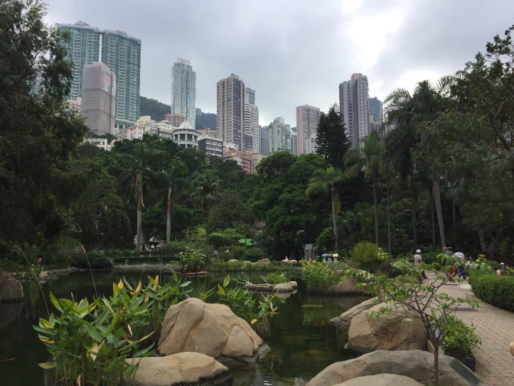 short stay in Hong Kong, visit the Hong Kong Park, skyline view