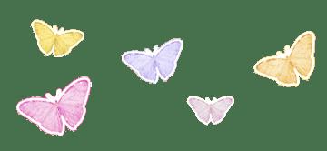 Upside Productions Butterflies