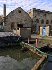 View of the mill.