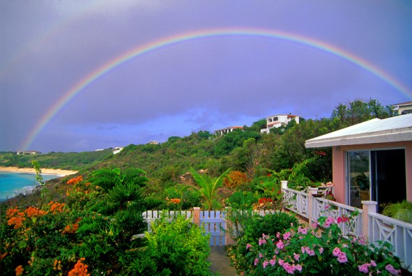 Anguilla16X24printsharpened