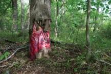 The_Davidsonville_Horror_3