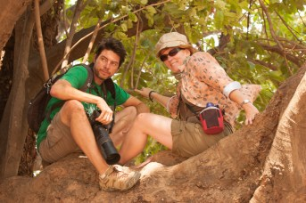 Mike and Nancy up in a tree in Zimbabwe - They were on a walking safari in Zimbabwe and had to climb a tree to escape some action by a pride of lion and a herd of buffalo.